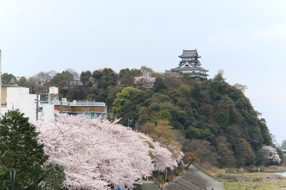 犬山橋から犬山城