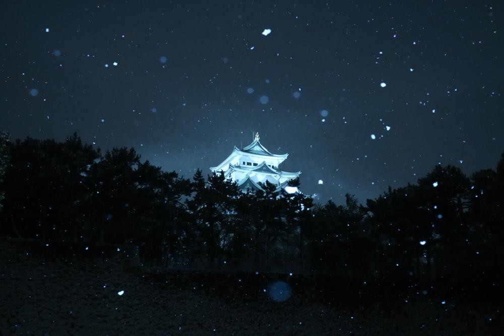 雪が降る中、名古屋城を撮りに行きました。